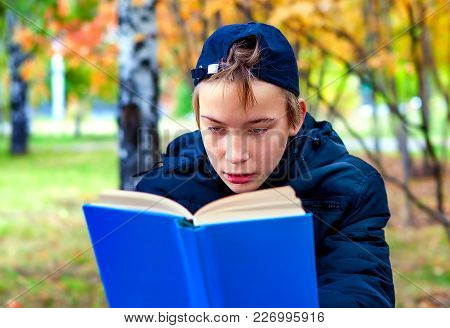 Teenager Read A Books In The Park