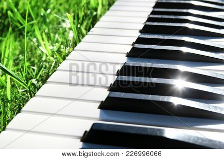 Piano Keyboard Closeup On The Green Grass With A Sunlight