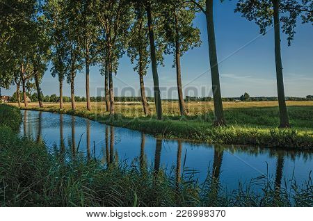 Creek In The Woods Next To Cultivated Fields At The Late Afternoon Light In The Village Of Damme. A
