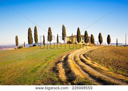 Pienza, Tuscany / Italy - December 20, 2015: Iconic Farmland I Cipressini, Italian Cypress Trees And
