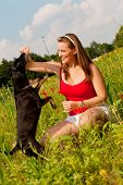 Woman is playing with her dog on a meadow in summer poster
