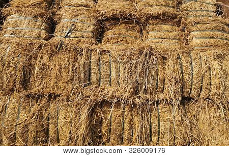 Dry Hay Bales. Hay Bales Are Stacked In Large Stacks. Harvesting In Agriculture.bales Of Hay. Hay Ba