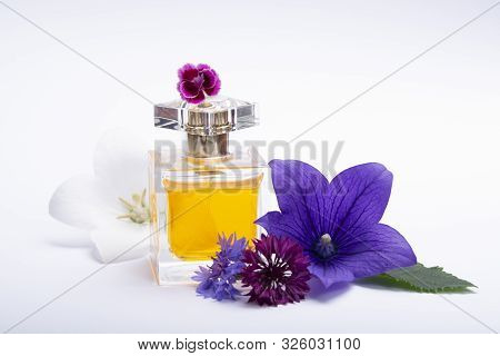 Creation Of Perfume Essence, Summer Flowers Sweet Light Fragrance, Perfume Bottle And Colorful Aroma