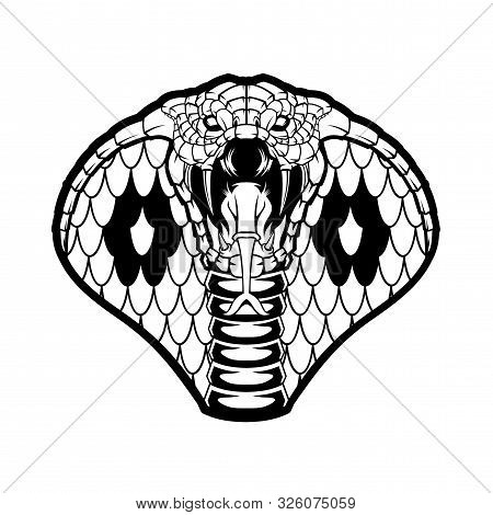 cobra head vector vector photo free trial bigstock cobra head vector vector photo free
