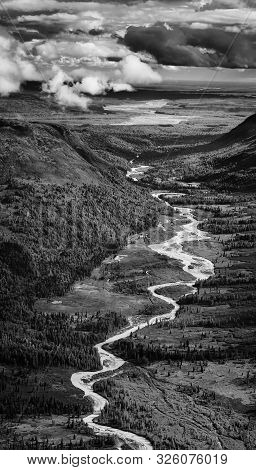 Black And White Image Of A River Winding Through The Dwarf Forest Of Alaska