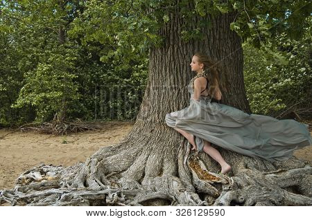 Beautiful Forest Nymph In The Style Of Fantasy Around The Old Oak Tree