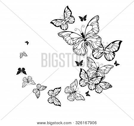 Flying Flocks Of Contour, Artistic Butterflies On White Background. Tattoo Style.