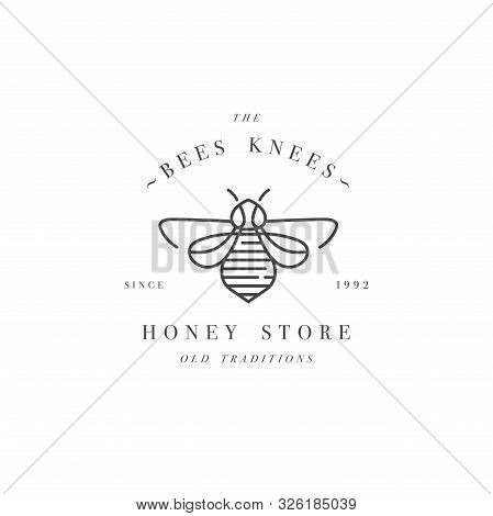 Vector Illustartion Logo And Design Template Or Badge. Organic And Eco Honey Label- Bee. Linear Styl
