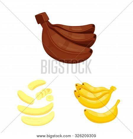 Isolated Object Of Tropical And Ripe Symbol. Set Of Tropical And Potassium Vector Icon For Stock.