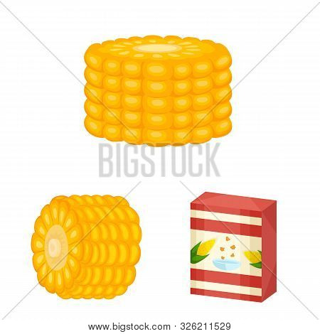 Vector Illustration Of Maize And Food Logo. Collection Of Maize And Crop Stock Vector Illustration.