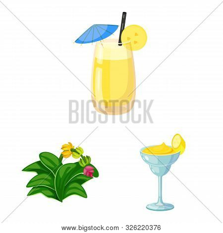 Vector Design Of Tropical And Ripe Sign. Set Of Tropical And Potassium Vector Icon For Stock.
