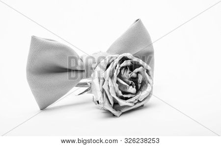 Fashion accessory. Esthete detail. Modern formal style. vintage and retro style. Groom wedding. male bow tie with silver rose flower isolated on white. Wedding accessory. Elegant look. wedding decor poster