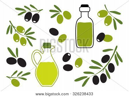Olive Oil With Black And Green Olives, Branch Olives. Hand Drawn. Vector Illustration