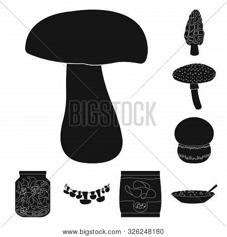 Isolated Object Of Variety And Ingredient Sign. Set Of Variety And Food Stock Vector Illustration.