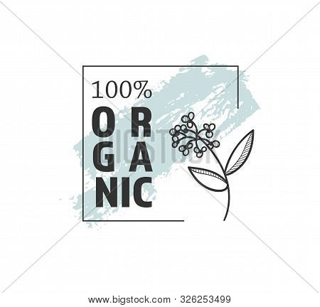 Botanical Logo Outline Drawing. Minimal Floral Vintage Style. Doodle Plant Vector Illustration. Pure