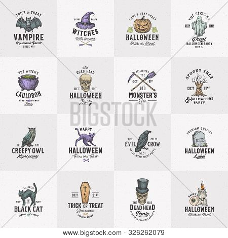 Vintage Style Halloween Logos Or Labels Template Big Set. Hand Drawn Raven, Scull, Cat, Bat, Witch H