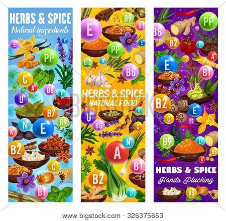 Herb And Spice Vitamins And Minerals Vector Banners With Food Seasonings And Condiments. Vanilla, Ci