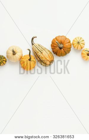 Minimalist Fall Background With Various Pumpkins Set In A Row, Autumn Concept With Blank Space For A