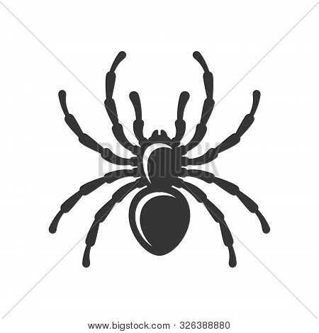 Black Spider Silhouette Icon On White Background. Vector