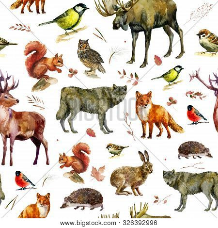 Watercolor Illustration, Pattern. Forest Animals On A White Background. Elk, Wolf, Fox, Hare, Squirr