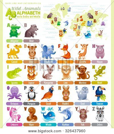 Alphabet Wildlife Infographics. Wild Animal, Sea Life, Bird. Baby Cartoon Cute Modern Template. Flat