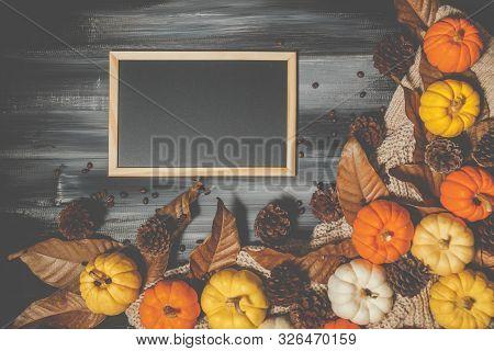 Top View Of Halloween Day And Thanksgiving Day, Orange Pumpkin, Yellow Pumpkin, White Pumpkin, Knitt