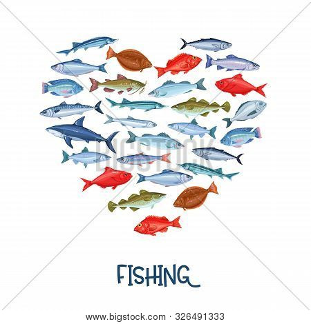 Fish Banner. Seafood Design With Salmon, Anchovy, Codfish, Sea Bass, Ocean Perch And Sardine. Icon M