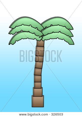 Palm Tree Illustraion