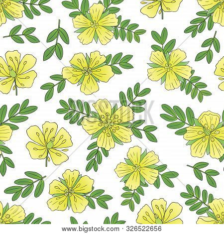 Medicinal Herbs Collection. Vector Hand Drawn Seamless Pattern Of A Plant Tribulus Terrestris On A W