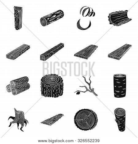 Isolated Object Of Hardwood And Construction Icon. Set Of Hardwood And Wood Stock Symbol For Web.