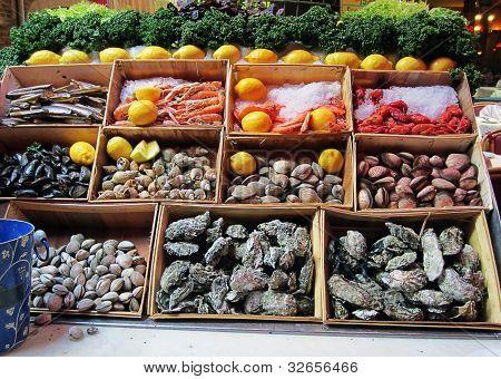 Seafood showcase