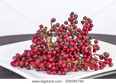 Shiny-leaf Prickly Ash, Scientific Name Is (zanthoxylum Nitidum (roxb.) Dc.) Herb Fruits Use For Foo