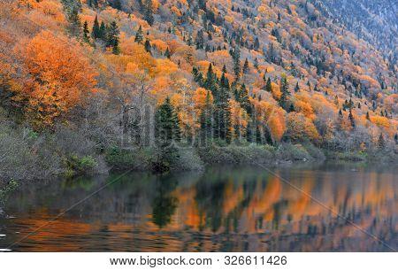 Autumn landscape in Parc de la national Jacques Cartier in Quebec province, Canada