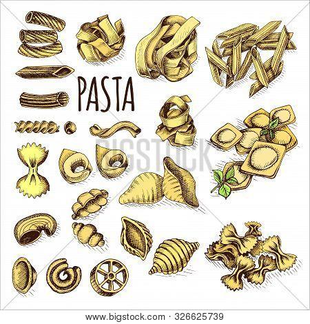 Vector Illustration Sketch - Pasta. Set Italian Food.