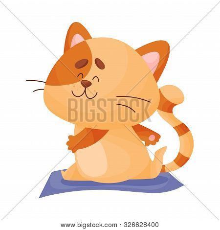 Cartoon Cat Yogi Sits In Twine. Vector Illustration.