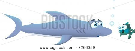 A curious shark. Instead of eating the small fishhe is looking at it with curiosity. poster