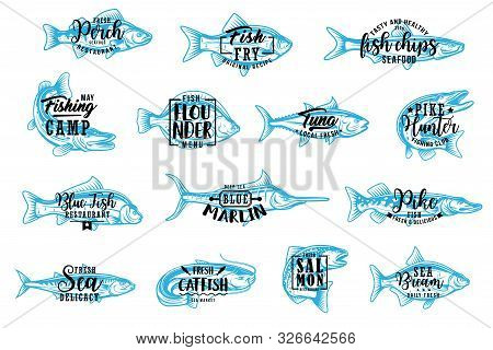 Fish Silhouette Isolated Icons With Lettering. Vector Seafood And Fishing Club, Perch And Fry Fish C