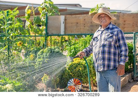 Horizontal Image Of Smiling Hispanic Man Watering In A Community Garden
