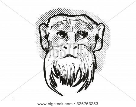 Retro Cartoon Style Drawing Head Of An Emperor Tamarin , A Monkey Species Viewed From Front On Isola