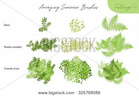 Set Of Summer Vector Foliage Ecology Tropical Brushes - Silhouettes Of Summer Leaves, Foliage Of Tre