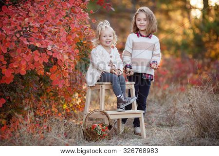 Two Cute Young Sisters Having Fun On Beautiful Autumn Day. Happy Children Playing In Autumn Park. Ki