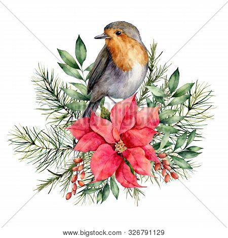 Watercolor Christmas Card With Robin And Floral Decor. Hand Painted Bird, Poinsettia, Berries, Fir A