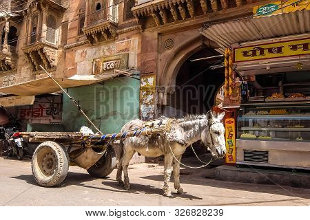 Bikaner, India - Circa March 2018. Traditional Transportation In India - Donkey Pulled Cart On The S
