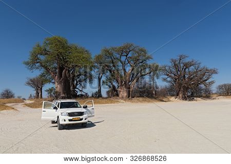 Nxai Pan National Park-botswana 15, 2018; Parked Car In Front Of The Baines Baobab In Nxai Pan Natio