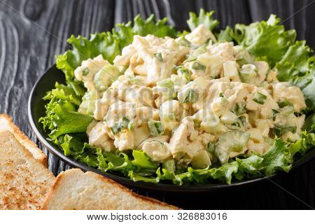 Organic Chicken Salad With Celery, Eggs Seasoned With Sauce Closeup On A Plate. Horizontal