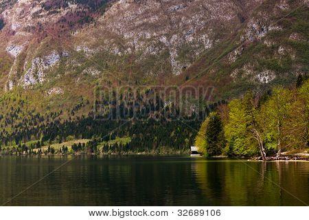 Lake Bohinj spot