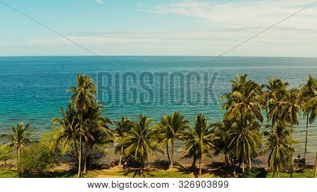 Landscape With Coconut Trees And Turquoise Lagoon, View From Above. Seascape With Palm Trees And A P