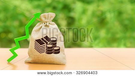 Money Bag And A Green Up Arrow. Increase Profits, Wages And Wealth. Investment Attraction. Loans And
