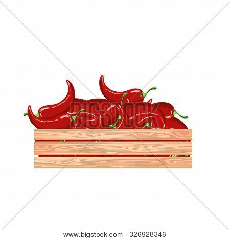 Red Hot Chilly Papper In Wood Box. Vegetarian Food Art Design Element Stock Vector Illustration For