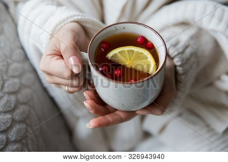 Winter Season Concept. Woman In Wool Sweater, Covered With A Warm Blanket,   Holding A Cup Of Hot Te